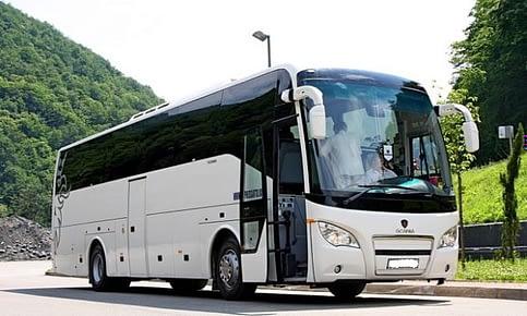 автобус higer a80 аренда